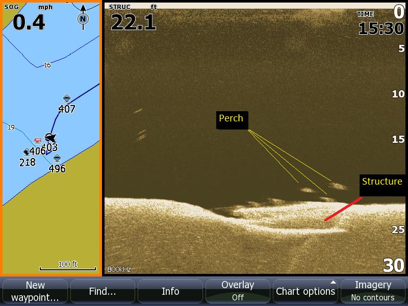 Sonar Image 1