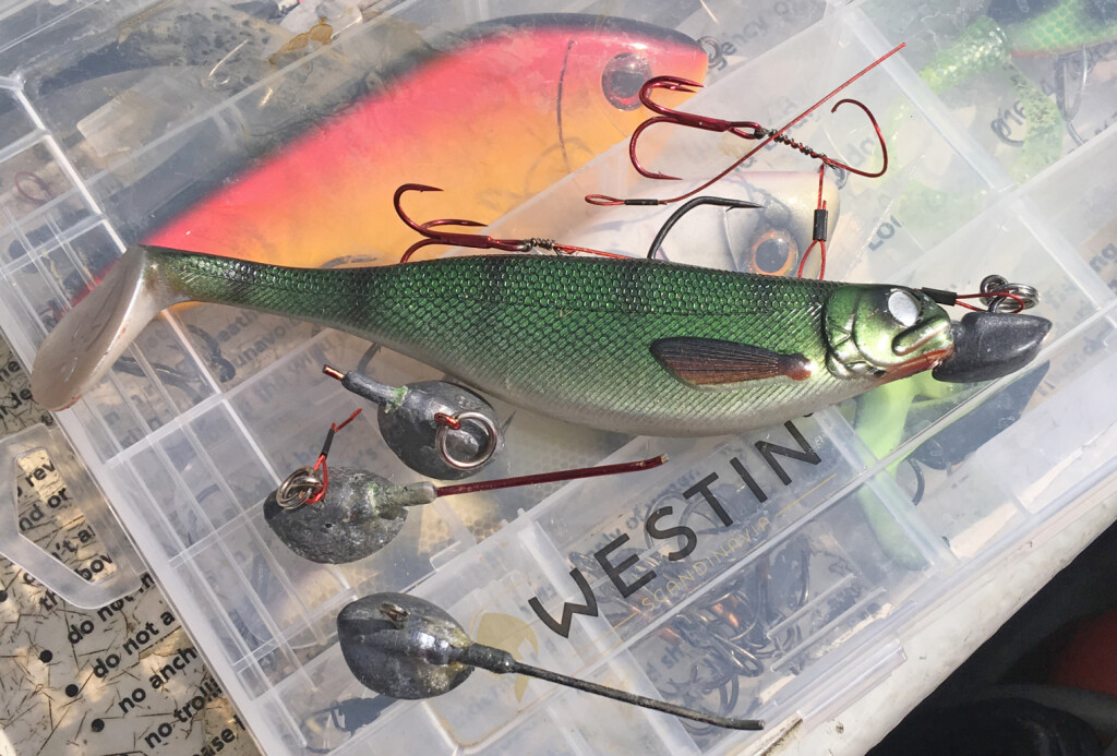 Cutting the points is the safest way of removing big lure hooks._01